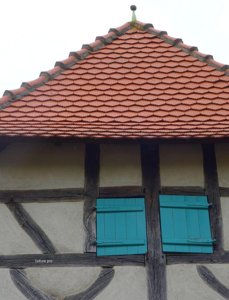 Bouteille en verre sur le toit d'une maison en Alsace.